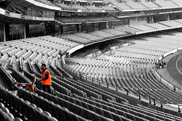 Melbourne Cricket Ground search